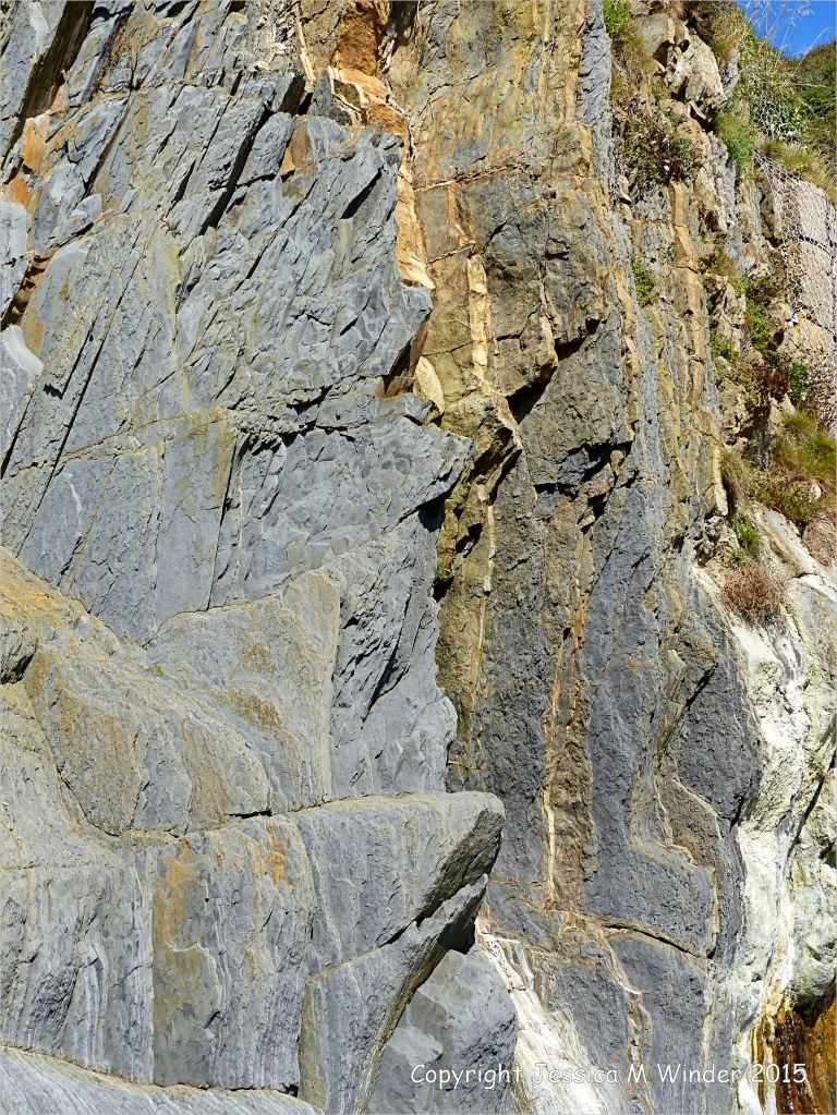 Close-up detail of vertical Carboniferous Avon Group limestone rock strata strata on the seashore at Church Doors on the South Pembrokeshire Coast in Wales