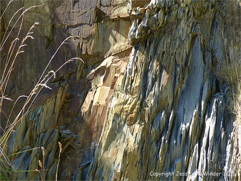 Close-up detail of rock strata of the Carboniferous Avon Group (Lower Limestone Shales) in the cliff by the metal stairs at Church Doors on the South Pembrokeshire Coast in Wales