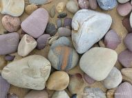 Pebbles on the upper shore of a Gower Peninsula beach in South Wales