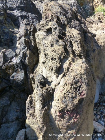 Strange natural textures in the weathering top surface of a lamprophyre dyke