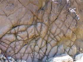 Strange natural textures in the weathering near vertical side surface of a lamprophyre dyke