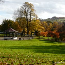 Autumn colours in Pontypool Park, South Wales