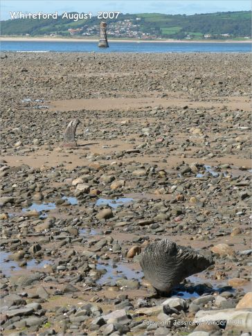 View looking towards the lighthouse at Whiteford on the Gower Peninsula showing rock strewn beach with patches of sand
