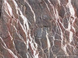 Close-up of the natural pattern of calcite veins in Carboniferous limestone at Threecliff Bay, Gower