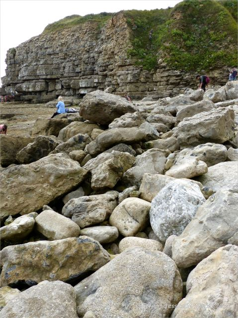 Boulders on the ledge at Winspit in Dorset where the worm tube fossils are found.