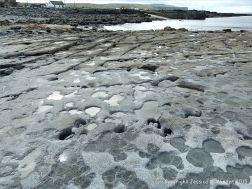 Karst topography on the upper shore at Doolin