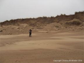 Sand dune erosion on the Welsh coast
