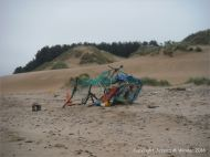Sand dune at Whiteford Sands on the north Gower coast in South Wales