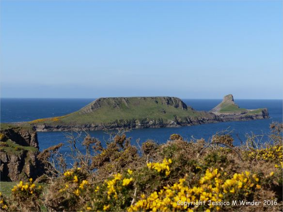 View of the Worm's Head from the Rhossili cliffs