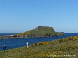 View of the east side of the Worm's Head