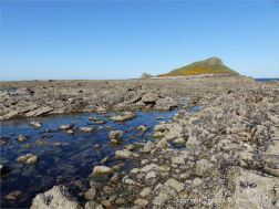 View of the Worm's Head from the south on the causeway