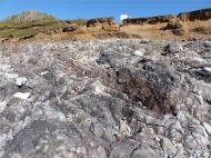 Limestone rock shore on the west side of Worm's Head