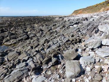 Rocky seashore at Worm's Head