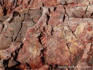 Rock texture in red haematite in Carboniferous limestone at Worm's Head