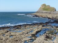 View looking towards Middle Head from the west shore of Inner Head at Worm's Head, Gower.