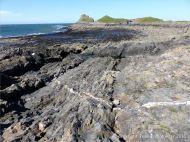 Wave-cut rock platform on Worm's Head