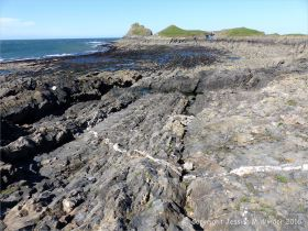 Wave-cut rock platform on Worm's Head