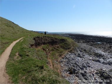 Footpath above the rocky shore at Worm's Head.