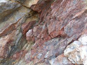 Rock texture in Carboniferous Pembroke Group Limestone at Three Cliffs Bay