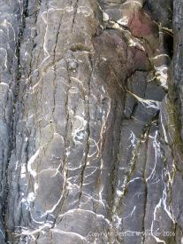 Patterns in the rock at Three Cliffs Bay