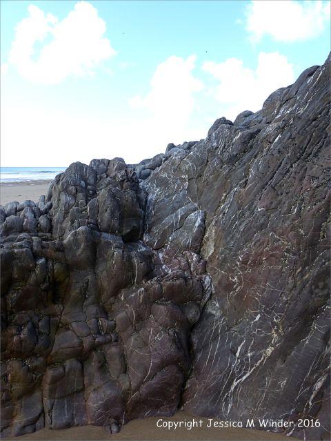Rock texture in limestone at Three Cliffs Bay