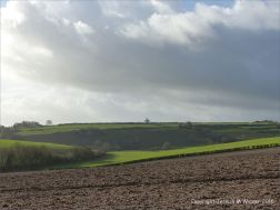 English countryside view with ploughed and planted fields