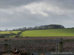 English countryside view with ploughed and growing fields