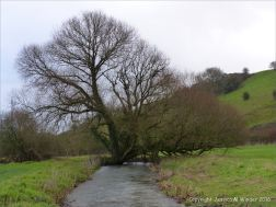 English countryside view with river in winter
