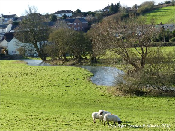 The tree-lined winding course of the River Cerne north of Charminster