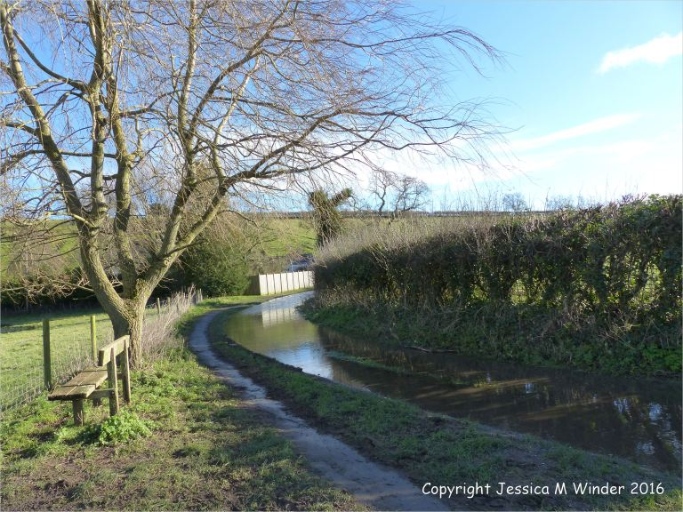 The flooded road at Mill Lane near Charminster