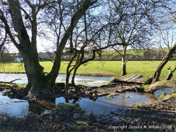 Flooding around a foot bridge over the River Cerne