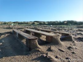 Flotsam wood pallet with drifted sand