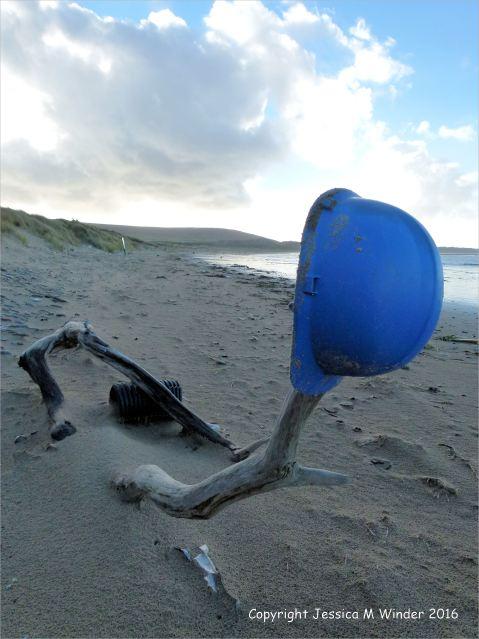 Blue plastic hard hat on driftwood