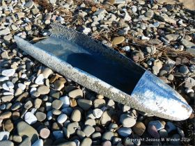 Blue plastic object with barnacle encrustation washed ashore