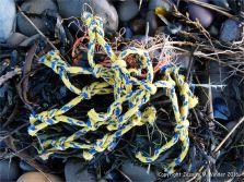 Piece of blue and yellow fishing net flotsam