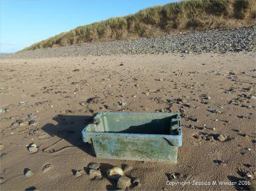 Blue plastic fish crate flotsam