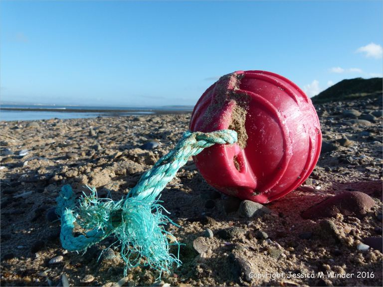 Red fishing buoy flotsam