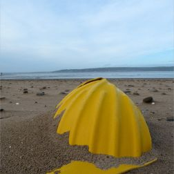 Yellow plastic hard hat washed ashore as flotsam