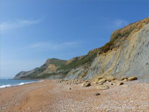 Eype beach where there are natural fracture patterns in drying mud (context shot)