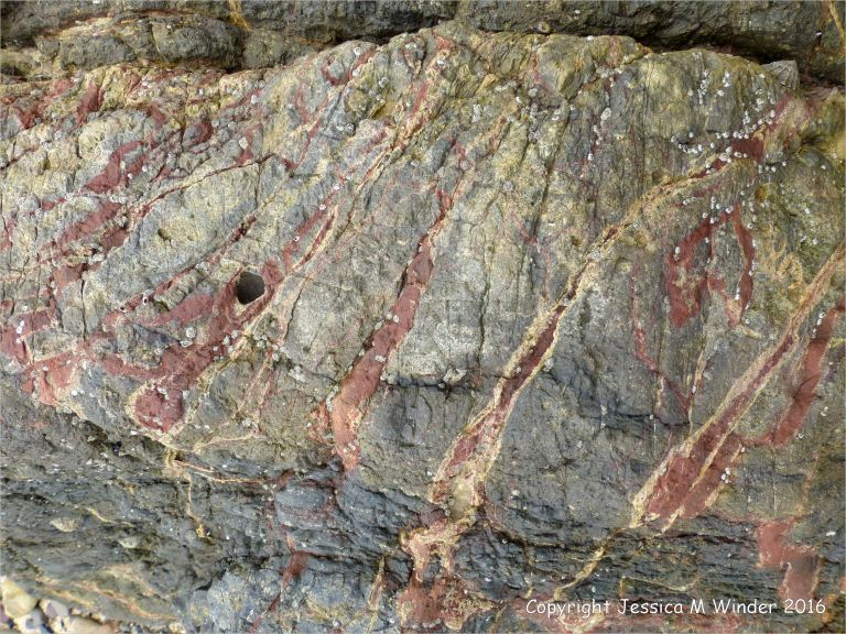 Veins of white calcite and red haematite in Carboniferous limestone