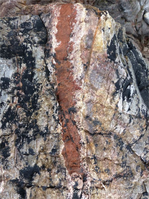 Texture and natural pattern in sedimentary rock