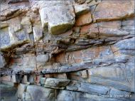 Textures and patterns in rock strata at Saundersfoot