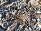 L'Eree Granite on the beach in Guernsey