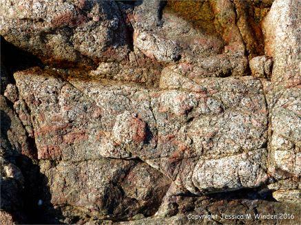 Close-up of L'Eree Granite