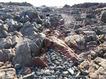 Pink aplite vein in granite on the shore between L@Eree Headland and Lihou Island on the Channel Island of Guernsey