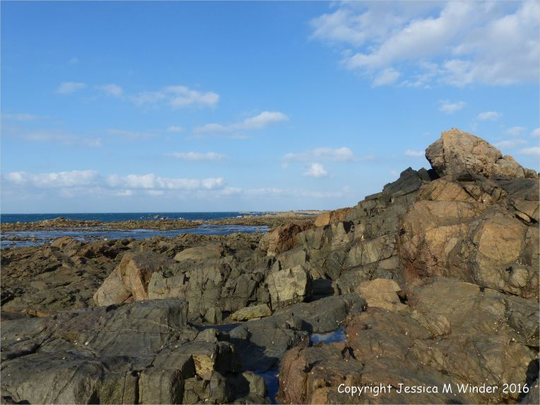A dolerite dyke crossing L'Eree granite on Guernsey in the Channel Islands