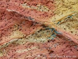 Soft red and yellow sandstone with holes made by bees