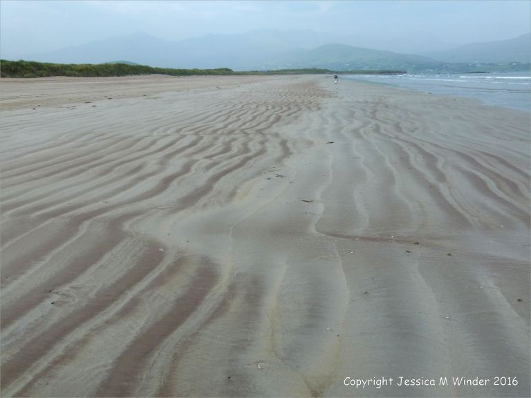 Coloured ripple patterns in the sand at Fermoyle