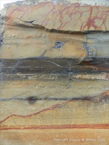 Natural pattern and texture in sedimentary rocks