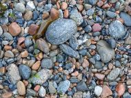 Wet pebbles on the beach at Havelet in Guernsey